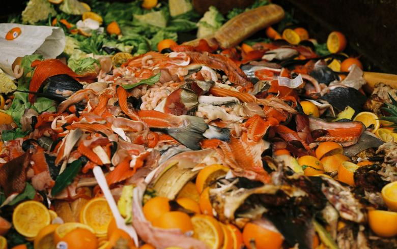 Anaergia awarded food waste recovery, renewables project in California