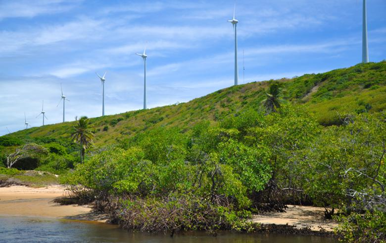 Brazil's wind generation increases 27% in 1st half of Aug