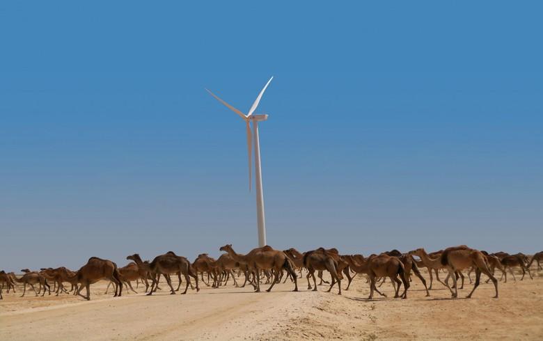 Elecnor, Siemens Gamesa to build 100-MW wind park in Mauritania