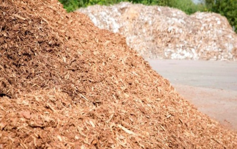 Brazil's biomass power generation grows 3% y/y in 2019 - report