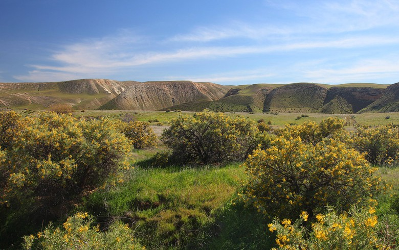 Panoche Valley PV project of 247 MW to be cut to conserve land