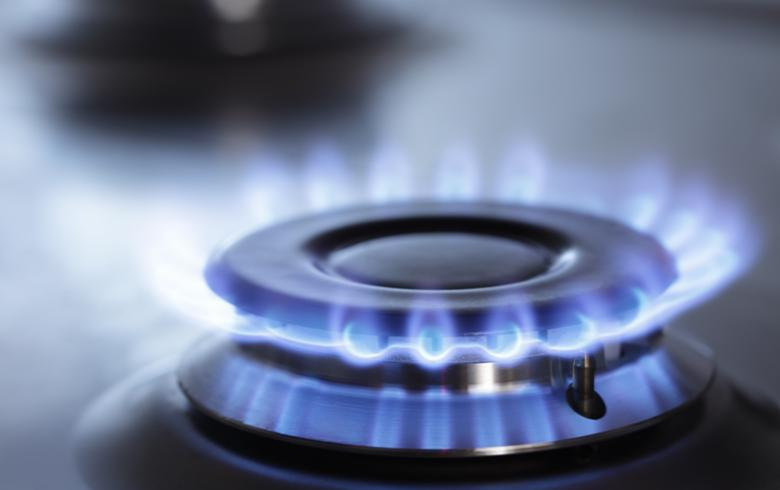 Srbijagas sees no room for gas price hike in 2016