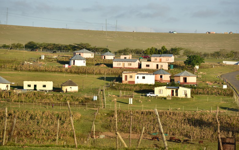 INTERVIEW - S Africa's grid-for-all dream fades as decentralised energy lights up