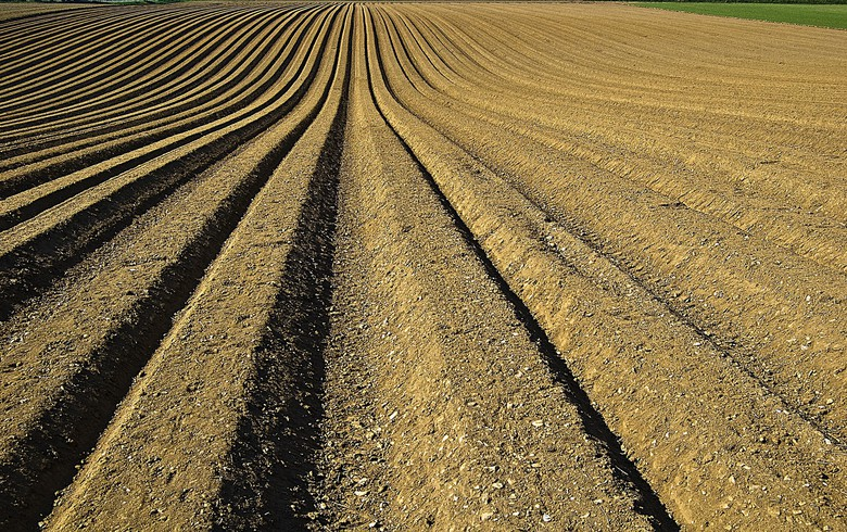 Bulgaria's Advance Terrafund buys 168 ha of land in Aug