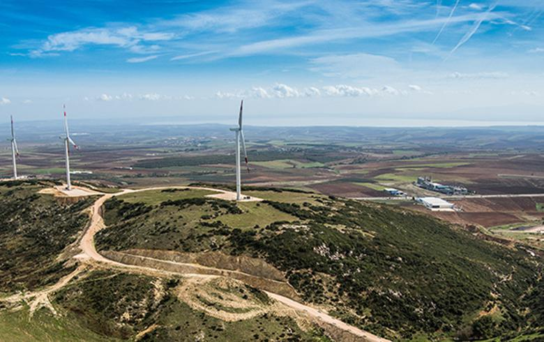 Chinese, European firms await Turkish wind tender - report