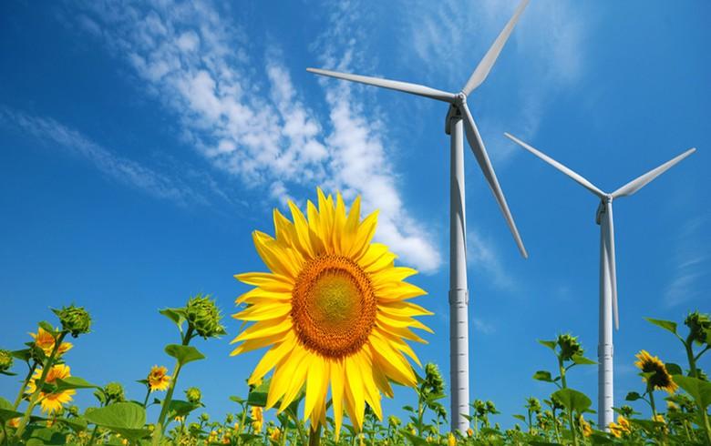 MET Renewables seeks antitrust nod to acquire Eolica Bulgaria