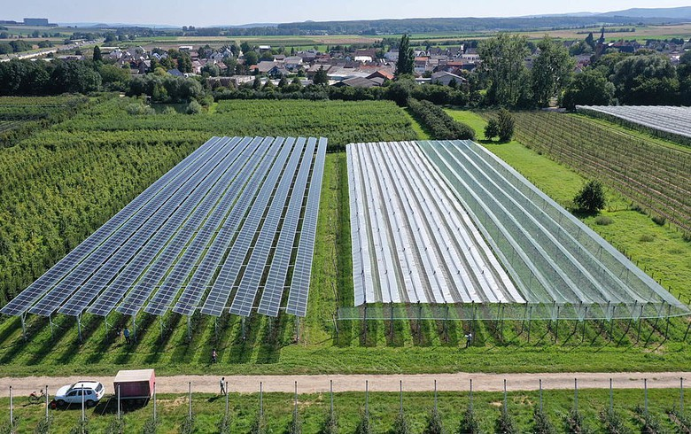 BayWa r.e., partners build agri-PV research facility for apples in Germany