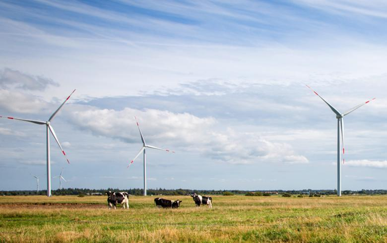 Thai wind projects chased away from agri-land - report