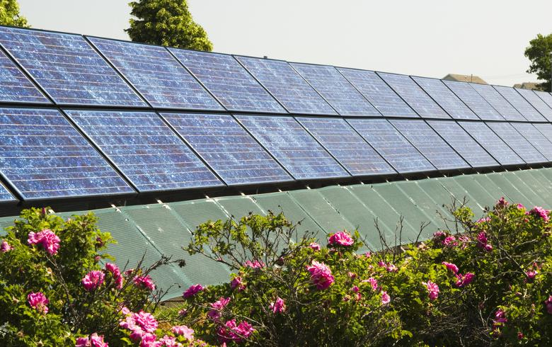 NextEnergy Capital buys 100-MWp community PV portfolio in New York
