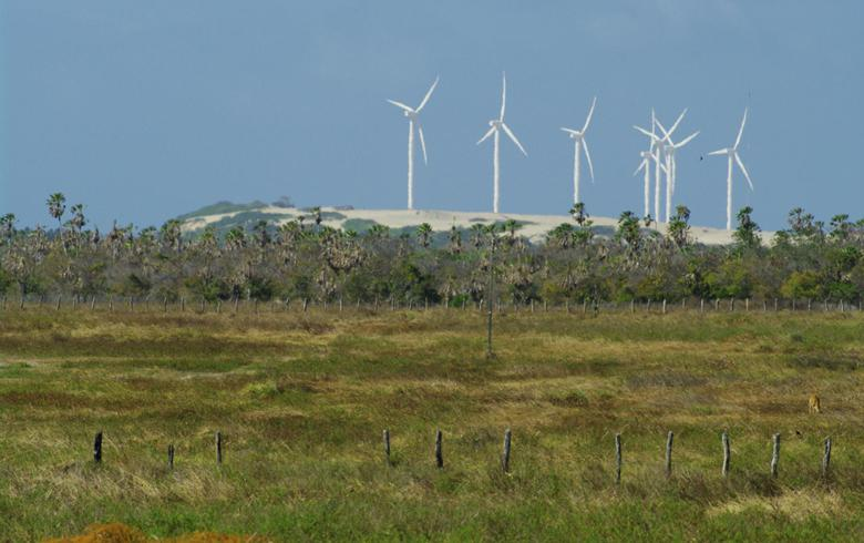 Brazil's wind generation falls 24% in early Mar