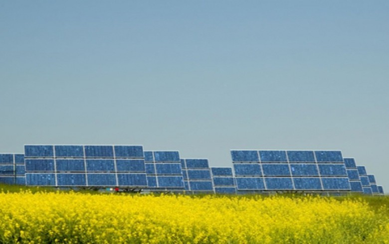 Bulgaria's Anerg Solar to cut capital to cover losses