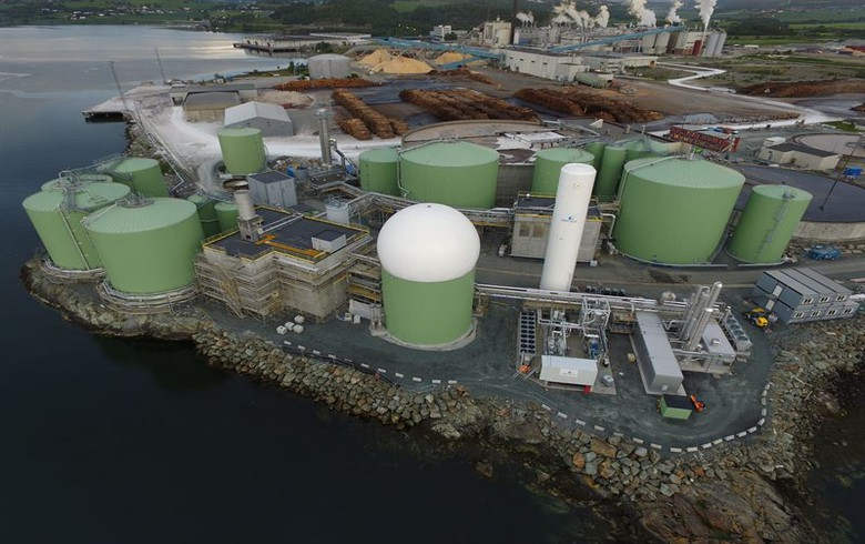 Finland's Wartsila sets up one-stop-shop biogas solutions arm