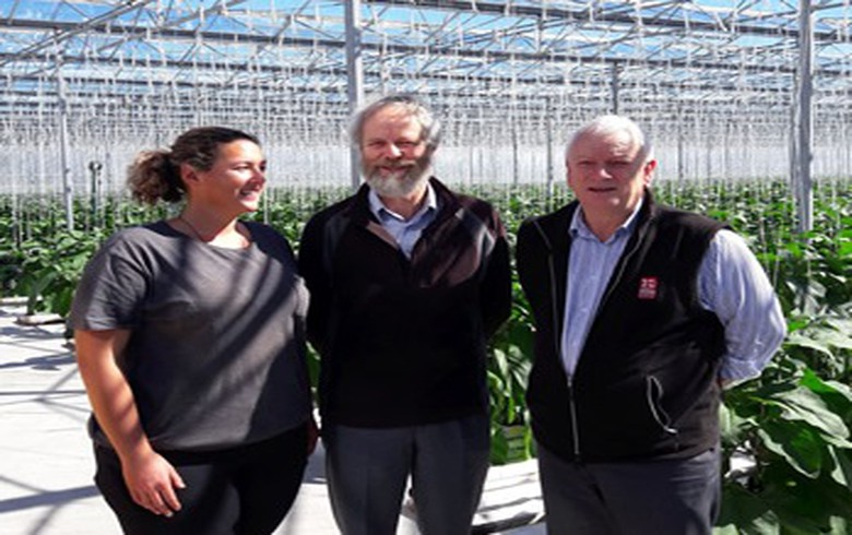 New Zealand's GNS Science to kick off geothermal heat potential study