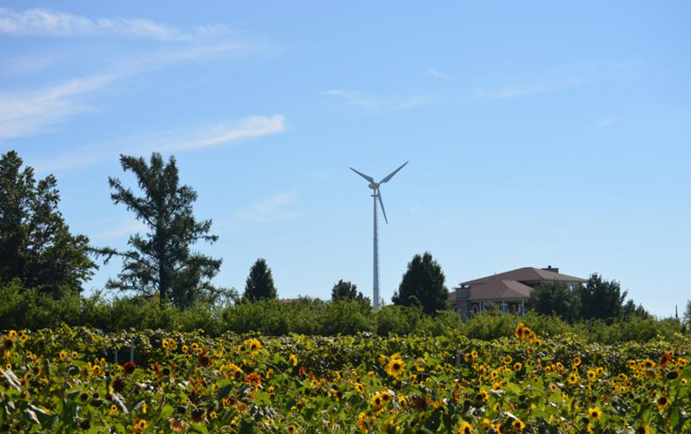 United Wind to add 3 MW of onsite power for Smithfield Foods