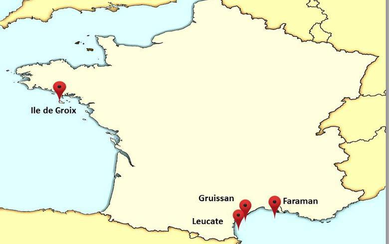 CDC, Meridiam join 24-MW floating wind project in France