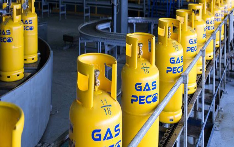 Romania's anti-trust body to look into takeover of Panebo Gaz by Gaspeco L&D