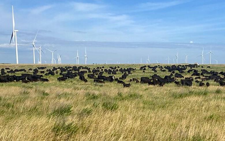 AEP unit in Oklahoma seeks almost 4 GW of renewables via RfPs