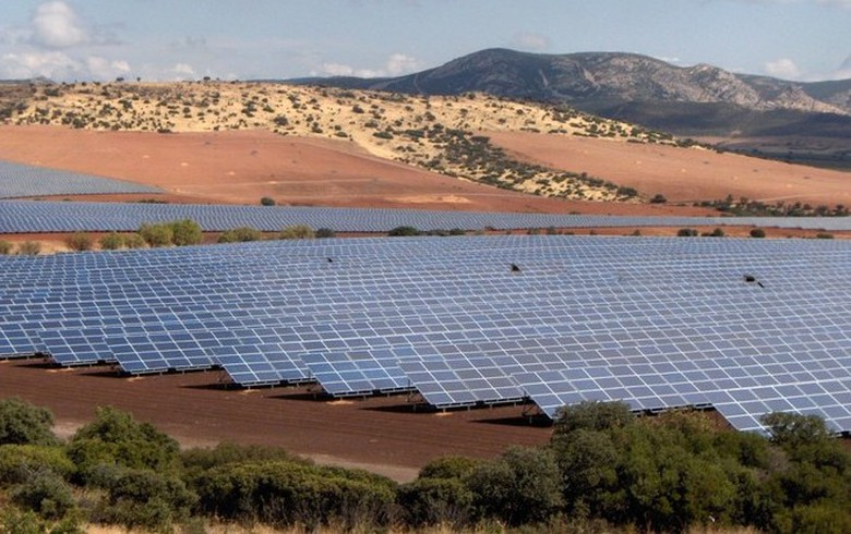 Spain's renewables increase output, but wind slips in Jan