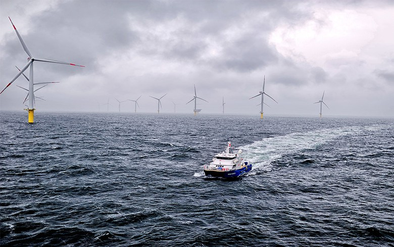 TenneT transmits 16% more German offshore wind power in H1