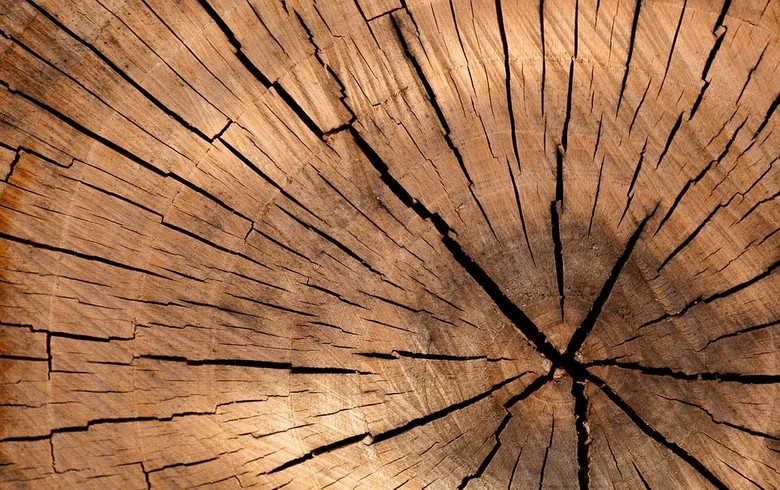 罗马尼亚的反垄断机构对31家木材贸易公司处以罚款,总额达2660万欧元