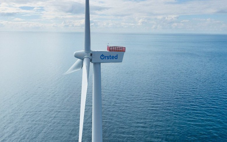 Ørsted, US unis to study whales in offshore wind lease areas