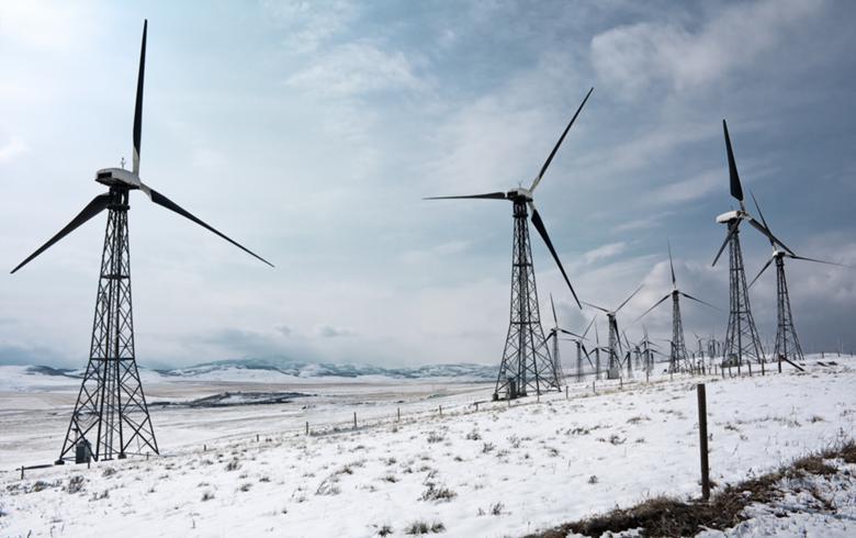 Canada's Alberta gets record low wind bids, awards 600 MW