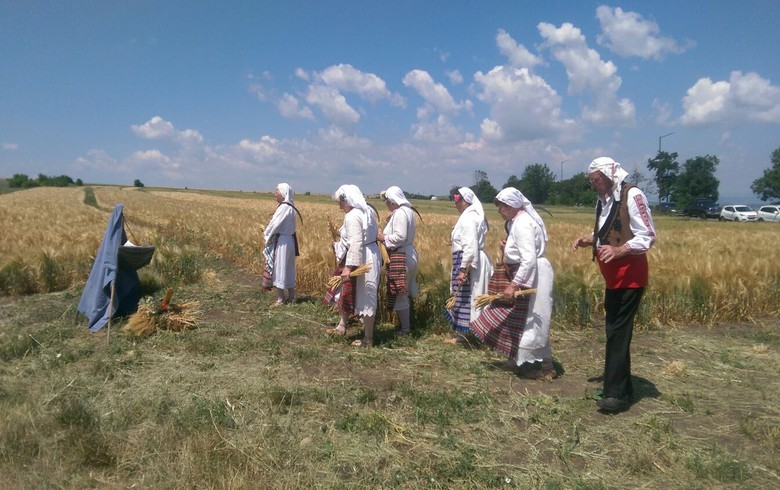 Moldova's 2019 agricultural output drops by 1.9%