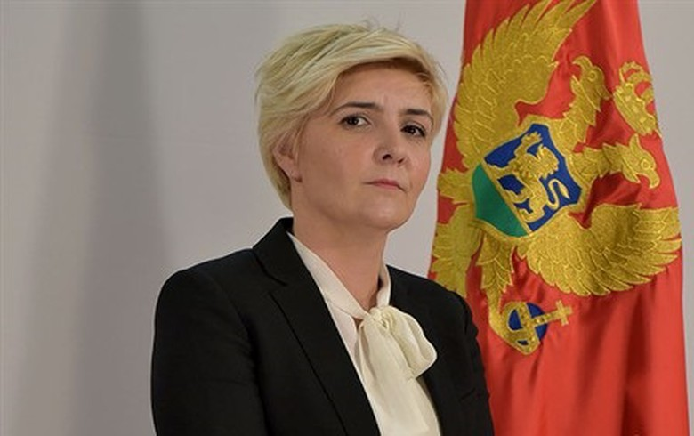 Montenegro's econ min says concessions for small HPPs not on govt agenda