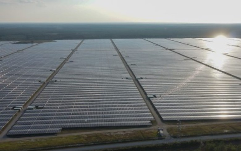 Solar sales lift Neoen's 2019 revenue to EUR 253m