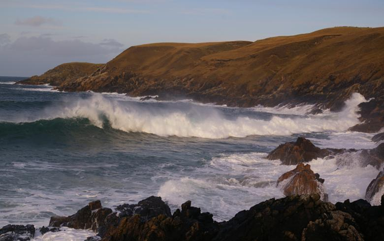 Wave Energy Scotland unveils winners in call for SMMP projects